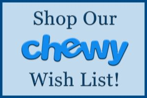 Shop our Chewy.com Wish List!
